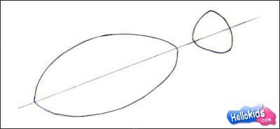 Como desenhar um peixe palhaço