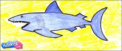 Como desenhar um tubarão