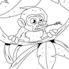 Desenho de um bebê macaco na árvore para colorir