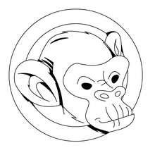 Desenho da cabeça de um macaco para colorir