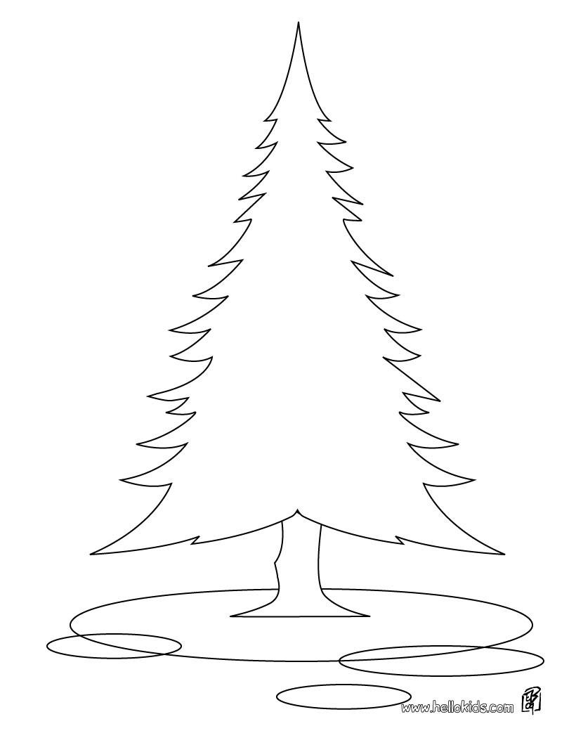 desenhos para colorir de desenho de pinheiro para colorir pt
