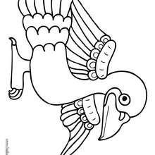 Desenho de um pombo para colorir
