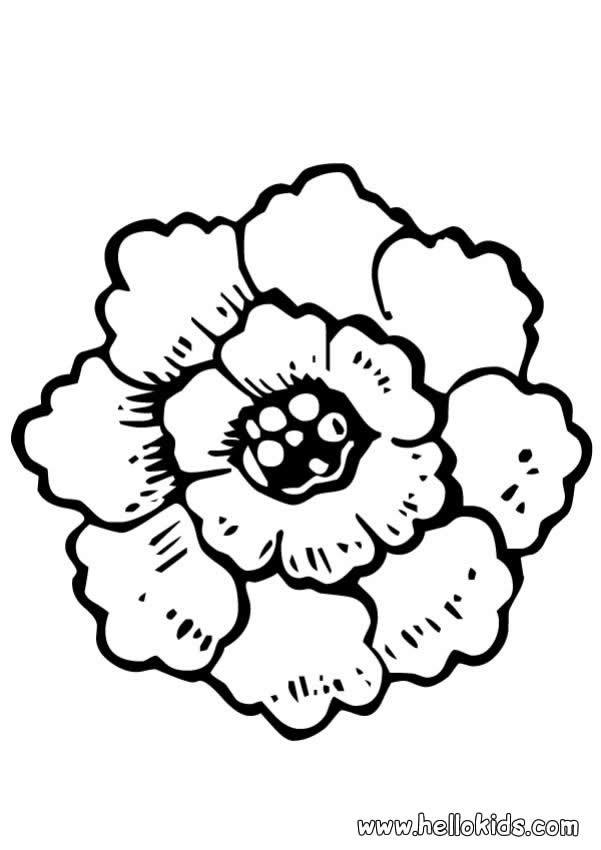 Desenhos Para Colorir De Desenho De Flores Rosas Para