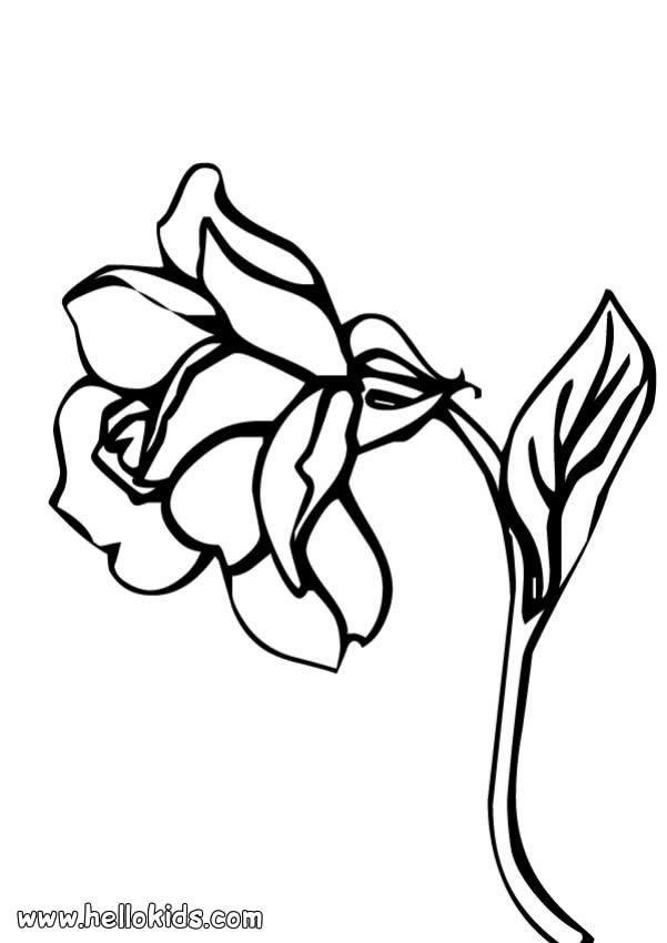 desenhos para colorir de desenho de uma flor com três folhas para