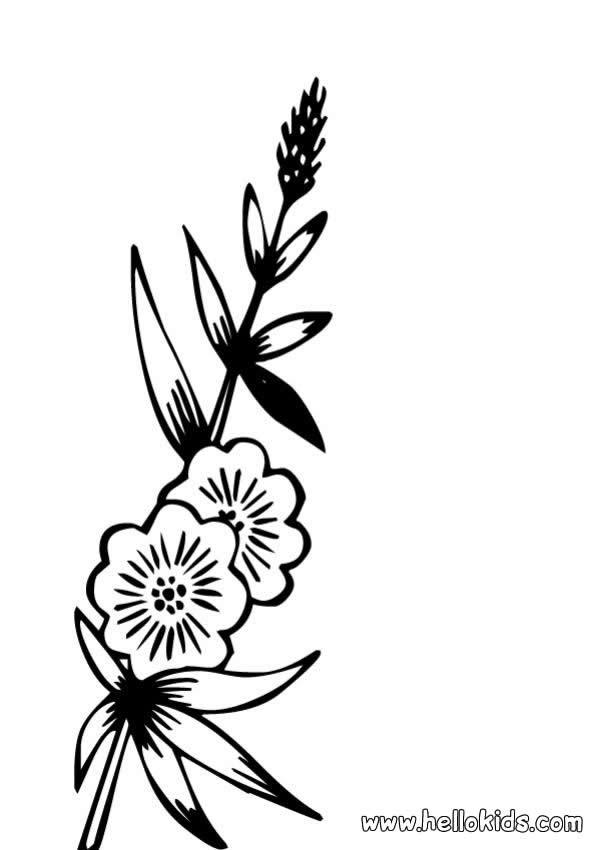 Desenhos Para Colorir De Desenho De Uma Flor Selvagem Para Colorir