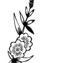 Desenho de uma Flor selvagem para colorir