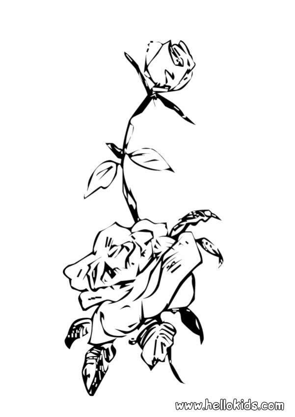 desenhos para colorir de desenho de flores rosas para colorir pt