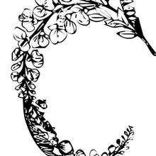Desenho de uma Coroa de flores para colorir