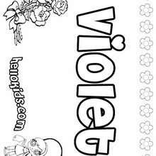 amor, Violet