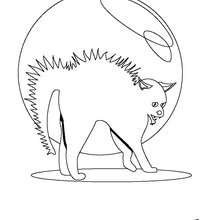 Desenho de um gatinho do dia das Bruxas para colorir