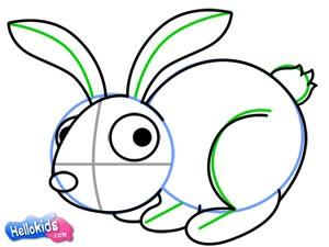 Como desenhar um coelho