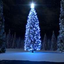 Papél de parede com uma árvore de Natal azul