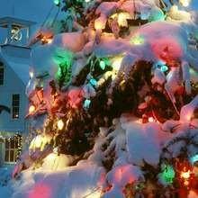 Papél de parede com uma árvore de Natal colorida na neve
