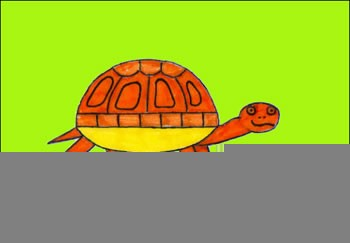 Como desenhar uma tartaruga