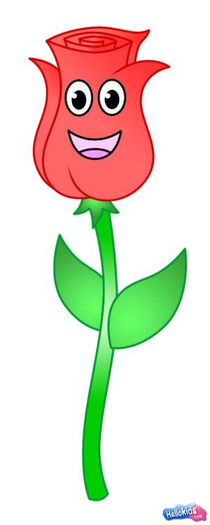 Como desenhar uma rosa