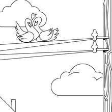 Desenho de pássaros apaixonados para colorir