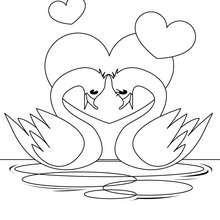 Desenho de um Cisne apaixonado para colorir