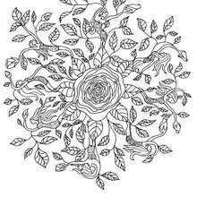 Mandala de rosas com fadas