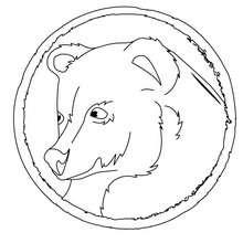 Desenho de um urso preto Asiático para colorir
