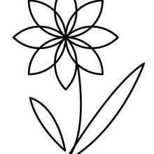 Desenho da linda flor para colorir