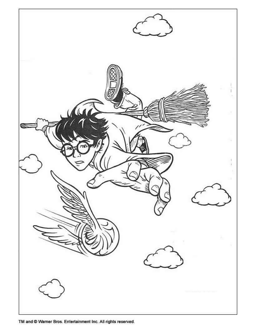 12++ Harry Potter Desenho Para Colorir