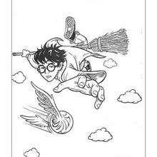 Desenho do Harry Potter voando para colorir