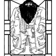 Desenho do Hagrid para colorir