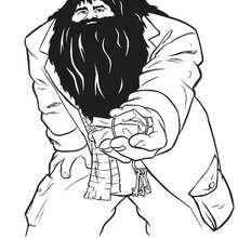 Desenho do guardião Rúbeo Hagrid para colorir