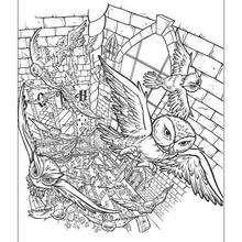 Desenho da escola Hogwarts para colorir