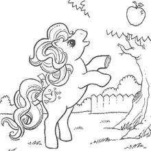 Meu pequeno pônei colhendo maçã