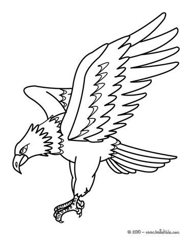 Gravura de uma Águia para colorir