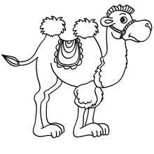 Desenho de um Camelo para colorir