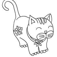 Desenho de um gato Kawaii para colorir