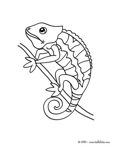 desenhos para colorir de desenho de um camaleão para colorir online