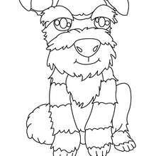 Um Terrier para colorir