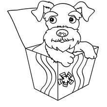 Desenho para colorir de um cão Terrier