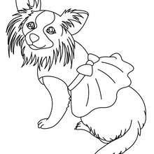 Desenho de um cão fofo para colorir