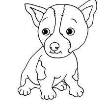 Desenho de um filhote de cachorro para colorir