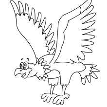 Uma Águia para colorir
