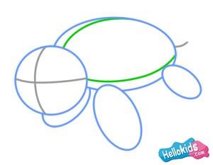 Como desenhar uma tartaruga marinha