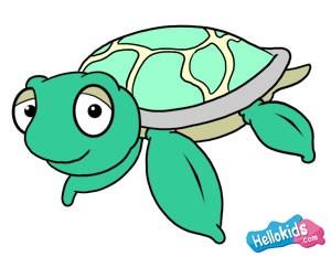 Como Desenhar Como Desenhar Uma Tartaruga Marinha Pt Hellokids Com