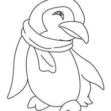 Um pinguim para colorir