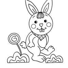 Desenho de um coelho engraçado para colorir