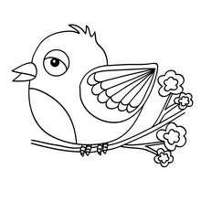 Desenho de um pássaro Kawaii para colorir online