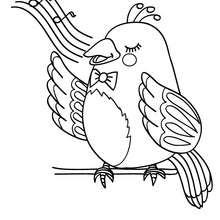 Desenho de um sabiá para colorir online