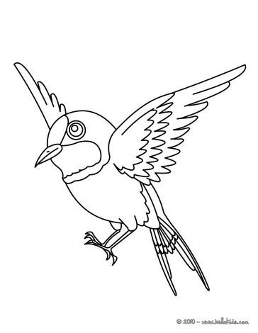 Desenhos Para Colorir De Desenho De Um Lindo Passaro Voando Para