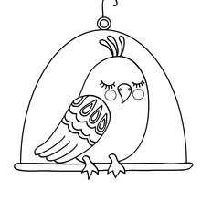 Desenho de um pássaro Kawaii para colorir