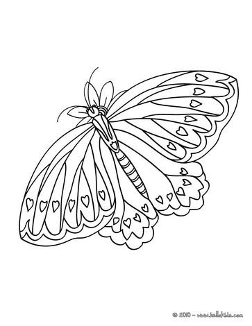 páginas para colorir insetos desenhos para colorir imprima