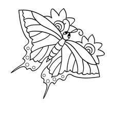 Desenho de uma Borboleta fofa para colorir