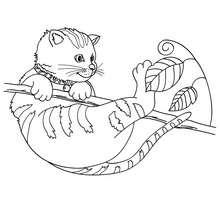 Desenho de um gato em cima de uma árvore para colorir